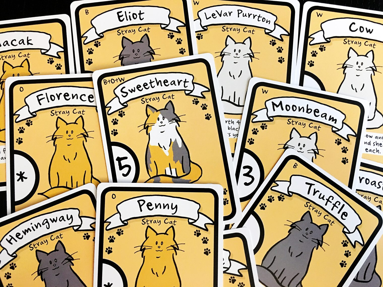 Cat Lady: Of Tuna, Twine, and Catnip » The Daily Worker